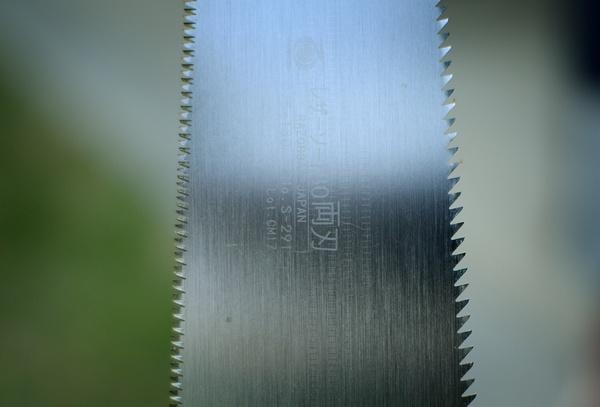 3308.jpg